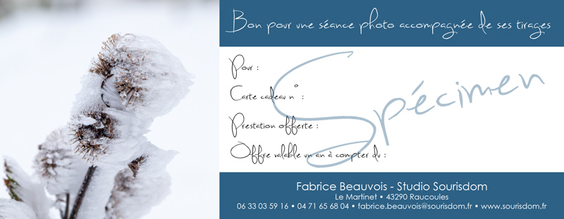 Les idées cadeaux de Fabrice Beauvois - Sourisdom pour les fêtes de fin d'année 2013