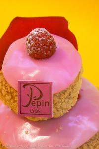 Les petits gateaux de la Patisserie Chocolaterie Pépin à Lyon